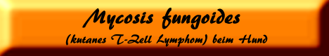 Mycosis fungoides (kutanes T-Zell Lymphom) beim Hund